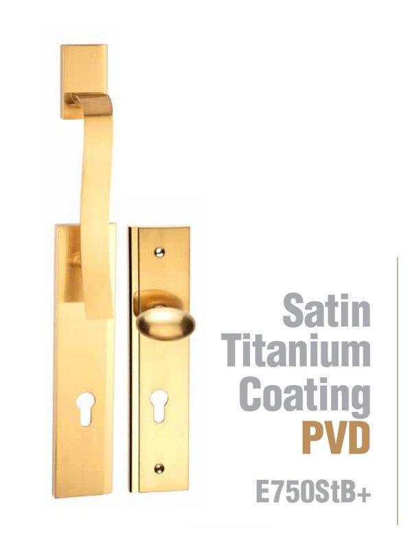 Satin titanium coating Entrance handle